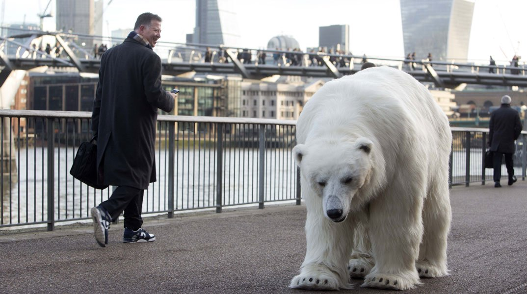 Fortitude: a Londra spunta un gigante orso polare 37 Fortitude: a Londra spunta un gigante orso polare
