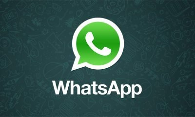 Arriva la spunta verde su WhatsApp: ecco cos'è e a cosa serve 17 Arriva la spunta verde su WhatsApp: ecco cos'è e a cosa serve