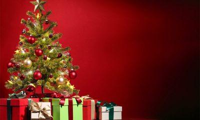 Natale 2017, le idee regalo - 1 puntata 64 Natale 2017, le idee regalo - 1 puntata
