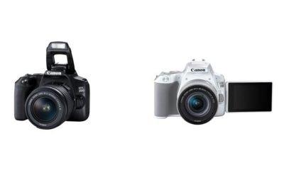 Canon EOS 250D, la nuova reflex più leggera al mondo 7 Canon EOS 250D, la nuova reflex più leggera al mondo